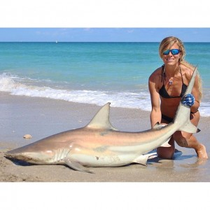 shark fishing from beach,darcie arahill